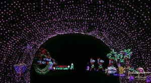 Take A Dreamy Ride Through The Largest Drive-Thru Light Show In Ohio, Butch Bando's Fantasy of Lights