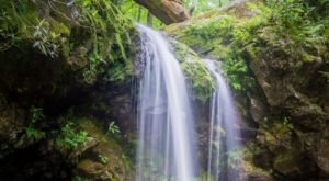 This Short 'n Sweet Grotto Falls Trail Leads You Straight To A Magical Waterfall