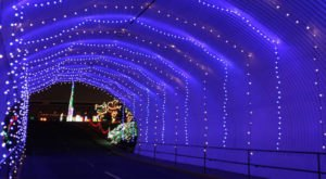 Take A Dreamy Ride Through The Largest Drive-Thru Light Show In North Carolina, Speedway Christmas