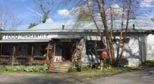 The Cinnamon Rolls From This North Carolina General Store Will Spoil You For Life