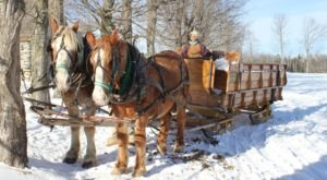 This 45-Minute Vermont Sleigh Ride Takes You Through A Winter Wonderland
