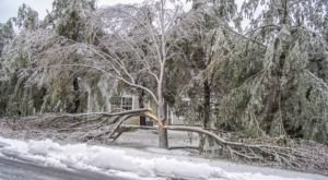 It's Impossible To Forget The Horrible Ice Storm That Ravaged New Jersey In 2015