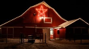 This Christmas Nativity Petting Zoo In Michigan Will Make Your Season Complete