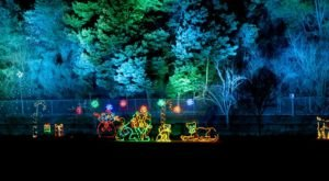 This Northern California Zoo Has One Of The Most Spectacular Christmas Light Displays You've Ever Seen