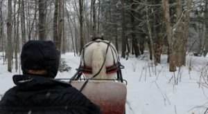 This Wondrous Sleigh Ride In Vermont Is A Winter Dream Come True