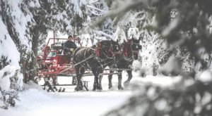 This 30-Minute Idaho Sleigh Ride Takes You Through A Winter Wonderland