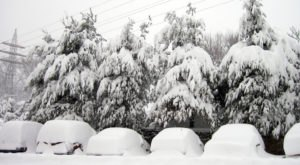 The 14 True Phases Of Surviving A Pennsylvania Winter