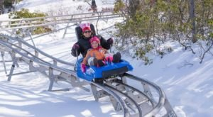 The Winter Coaster In Pennsylvania That Will Take You Through A Snowy Mountain Wonderland
