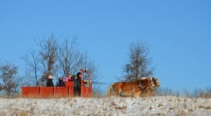 Enjoy A 90-Minute Sleigh Ride Through A Winter Wonderland At Twin Lakes In Wisconsin