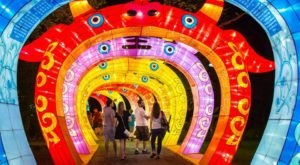 8 Winter Attractions For The Family In Austin That Don't Involve Long Lines At The Mall