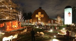 This Christmas Nativity Petting Zoo In North Carolina Will Make Your Season Complete