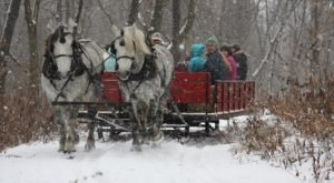 Enjoy A 20-Minute Sleigh Ride Through A Winter Wonderland In DuPage County In Illinois