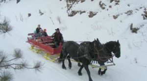 The South Dakota Sleigh Ride That Takes You Through A Winter Wonderland