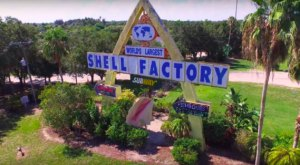 Take A Tour Of The World's Largest Shell Factory In Florida