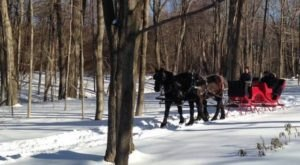 Enjoy A 45-Minute Sleigh Ride Through A Winter Wonderland At Wood Acres Farm In Connecticut