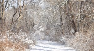 9 Picturesque Trails In Rhode Island That Are Perfect For Winter Hiking