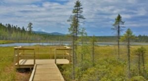 Vermont's Newest Boardwalk Leads To A Little Slice Of Heaven