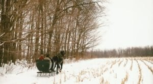 Enjoy A 30-Minute Sleigh Ride Through A Winter Wonderland At Ma & Pa's Gift Shack In Ohio