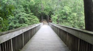 This Peaceful Lakeside Trail In Virginia Will Soothe Your Soul