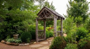 The Hidden Mountain Park In North Carolina You'll Want To Spend More Time In