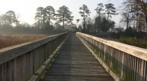 Most People Have No Idea This Beautiful Boardwalk Park In Virginia Even Exists