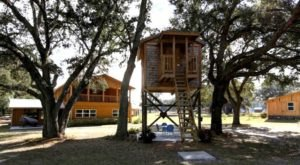 Have 100 Acres All To Yourself At This Ultimate Family Getaway In Florida