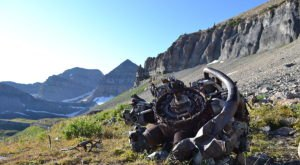 The Unique Hike In Utah That Leads You To Plane Wreckage From 1955