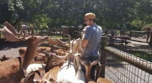 The Whole Family Will Love This Exotic Animal Petting Zoo In East Tennessee