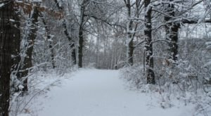 This Wisconsin Winter Wonderland Has More Than 60 Miles of Snowy Trails To Explore