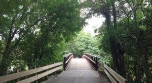 Take The Longest Paved Trail In Illinois For An Adventure Everyone Can Enjoy