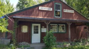 The Largest Used Bookstore In New Hampshire Has More Than 30,000 Books