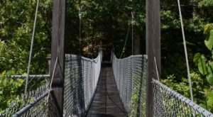 This Dramatic Bridge Hike In Vermont Will Leave You Weak In The Knees