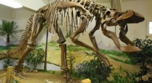 Here Are The 5 Must-See Montana Museums For Dinosaur Lovers