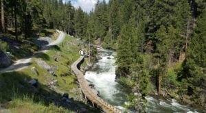 This Easy Northern California Rail Trail Takes You Through A Woodland Paradise