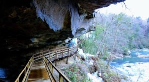 This Cliffhanging Boardwalk Trail in West Virginia Will Make Your Stomach Drop