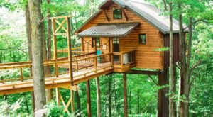 Few People Know About These Unexpectedly Awesome Tree Houses In Ohio Amish Country