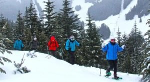 The Snowshoe Tour In Washington You'll Want To Take Before Spring