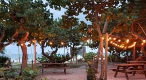 A Restaurant Tucked Inside Florida's Hugh Taylor Birch State Park, Park And Ocean Is A Lovely Place To Dine