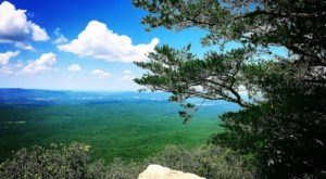 Take An Unforgettable Drive To The Top Of Alabama's Highest Point