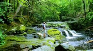 Take This Easy Trail To An Amazing Quintuple Waterfall In Connecticut