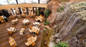 The Breathtaking Waterfall Restaurant In Arizona Where The View Is As Good As The Food