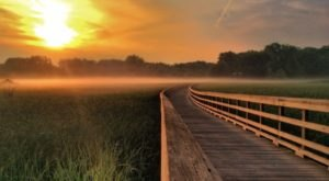 9 Boardwalk Hikes Near Cleveland That Offer A Beautiful And Easy-Peasy Walk