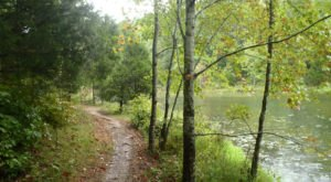 Kick Off Spring In Nashville With These 5 Scenic Hikes Under One Mile