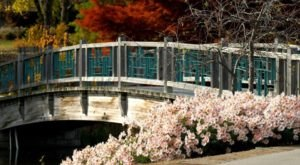 This Beautiful 970-Acre Botanical Garden In Missouri Is A Sight To Be Seen