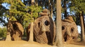 Giants Live In This Oregon Park And You'll Want To See Them For Yourself