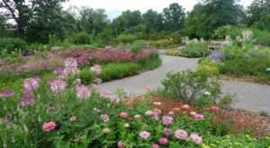 This Beautiful 300-Acre Botanical Garden In Detroit Is A Sight To Be Seen
