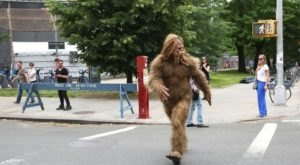 There's A Bigfoot Festival Happening Near Cleveland And You'll Absolutely Want To Go