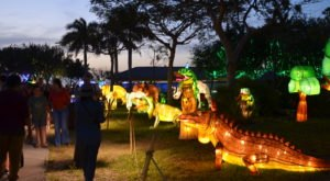 There's A Chinese Lantern Festival Coming To Alabama And It's Downright Magical