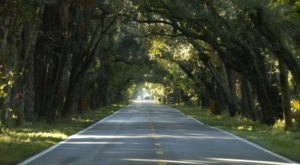 The 12-Mile Scenic Drive In Florida You Will Want To Take As Soon As You Can