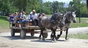 Nothing Compares To A Wagon Ride Through This Northeast Ohio Animal Sanctuary